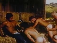 4some videos pornografia - pornografia gay